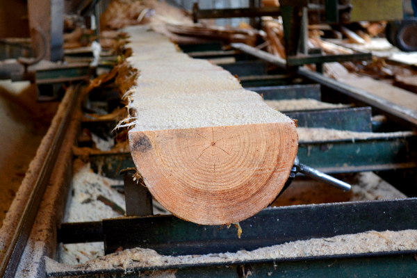 Turnkey Solutions for Upcycling of Local Trees